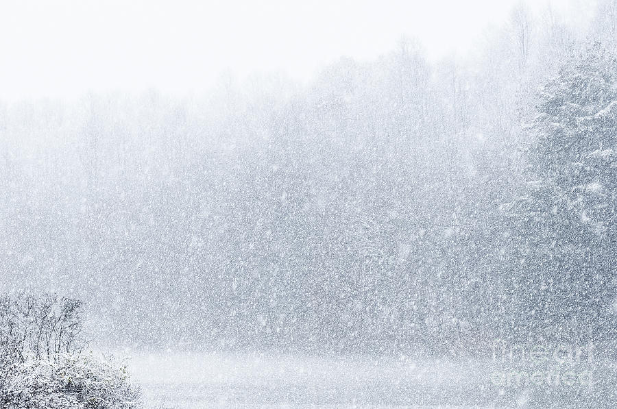 Snow Falling Wallpaper For Ipad Snow Storm Photograph By Thomas R Fletcher
