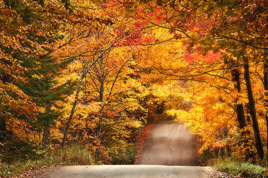Fall In Maine Wallpaper Autumn Country Road Photograph By Wade Crutchfield