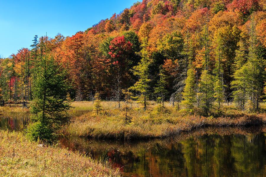 Bald Mountain Pond Ny Photograph by MaryGail Perkins