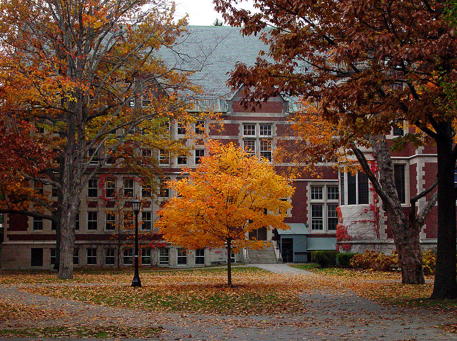 Fall Scripture Iphone Wallpaper Bowdoin College Campus In The Fall Photograph By David