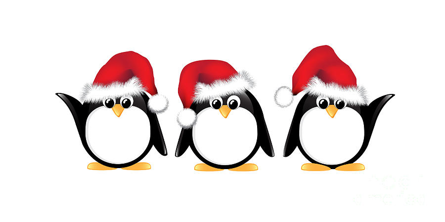 Cute Wallpapers Ipad App Christmas Penguins Isolated Photograph By Jane Rix