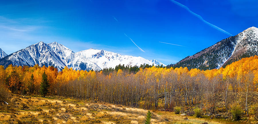 Fall Scenes For Ipad Wallpaper Colorado Rocky Mountain Independence Pass Autumn Pano 1