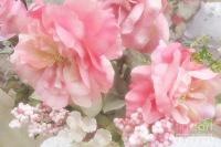 Dreamy Vintage Cottage Shabby Chic Pink Roses - Romantic ...