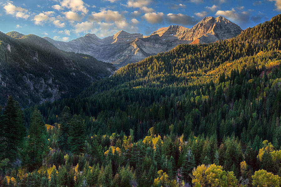 Bing Fall Desktop Wallpaper Fall Colors On Mt Timpanogos Photograph By Douglas Pulsipher