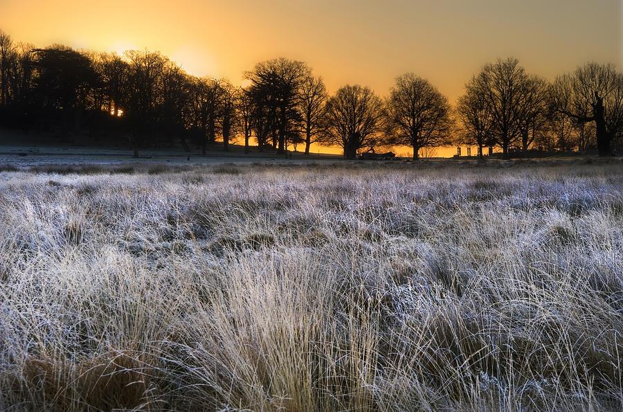 Fall Owl Wallpapers Frosty Winter Landscape Across Field Towards Vibrant