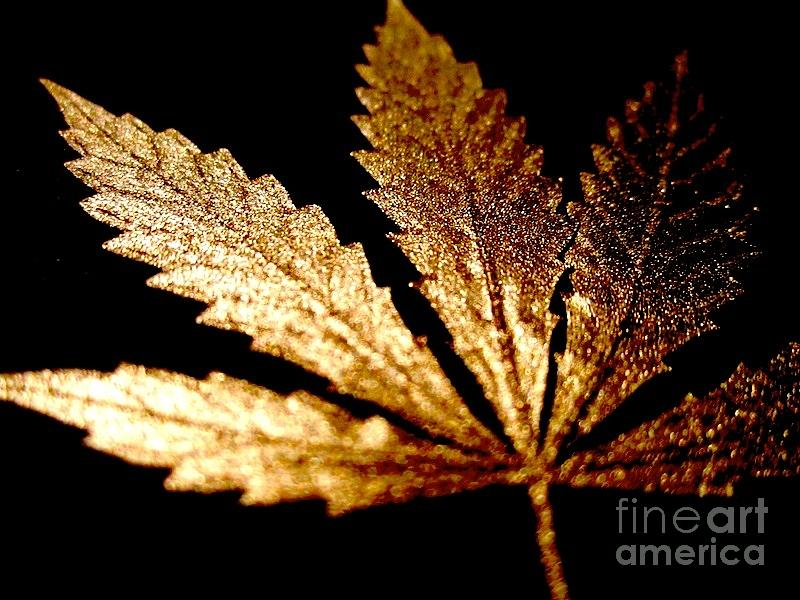 Weed Wallpaper Iphone Golden Cannabis Leaf Mixed Media By Sean Paradise
