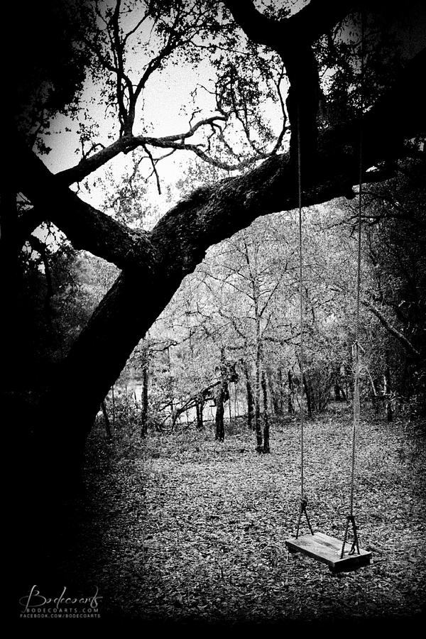 Lonely Girl Walking In Rain Wallpaper Lonely Tree Swing In The Woods Photograph By Robin Lewis