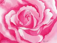 Monochromatic Rose Painting by Marsha Elliott