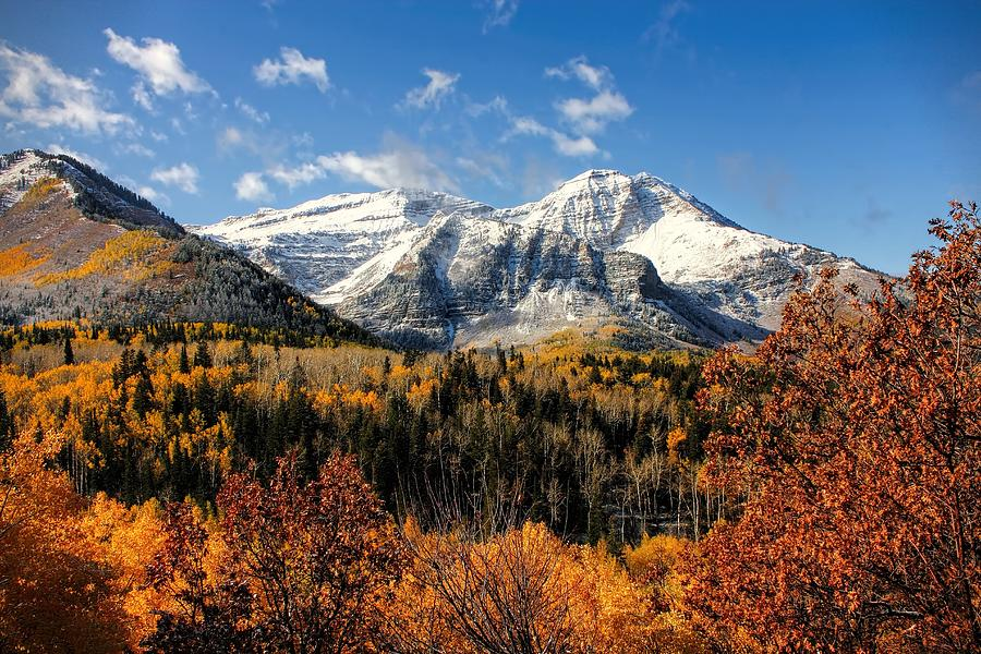 Fall Wallpaper For Android Phone Mount Timpanogos In Autumn Utah Mountains Photograph By
