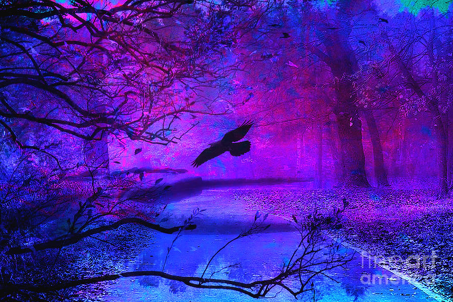 Orioles Iphone Wallpaper Purple Gothic Haunting Nature Surreal Fantasy Gothic