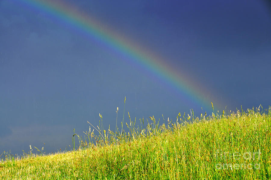 West Virginia Iphone Wallpaper Rainbow Over Pasture Field Photograph By Thomas R Fletcher