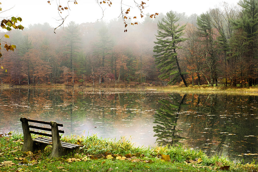 Foggy Fall Wallpaper Relaxing Autumn Beauty Landscape Photograph By Christina Rollo