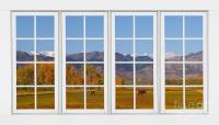 Rocky Mountains Horses White Window Frame View Photograph ...