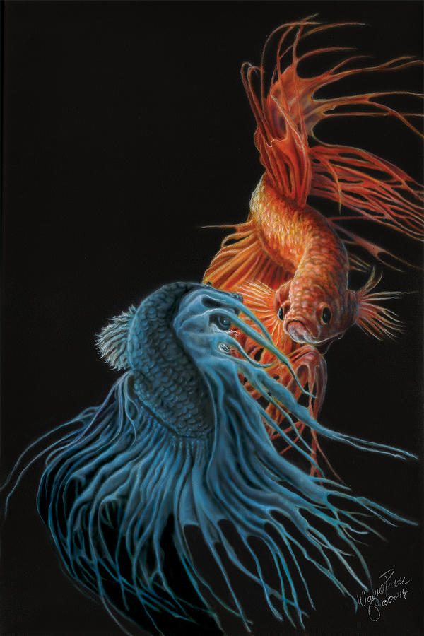 Black And White Wallpaper Decor Siamese Fighting Fish Two Painting By Wayne Pruse