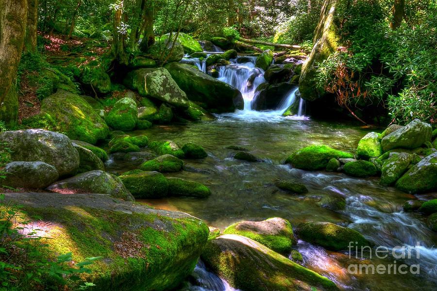 Smoky Mountains Iphone Wallpaper Smoky Mountain Stream 3 Photograph By Mel Steinhauer