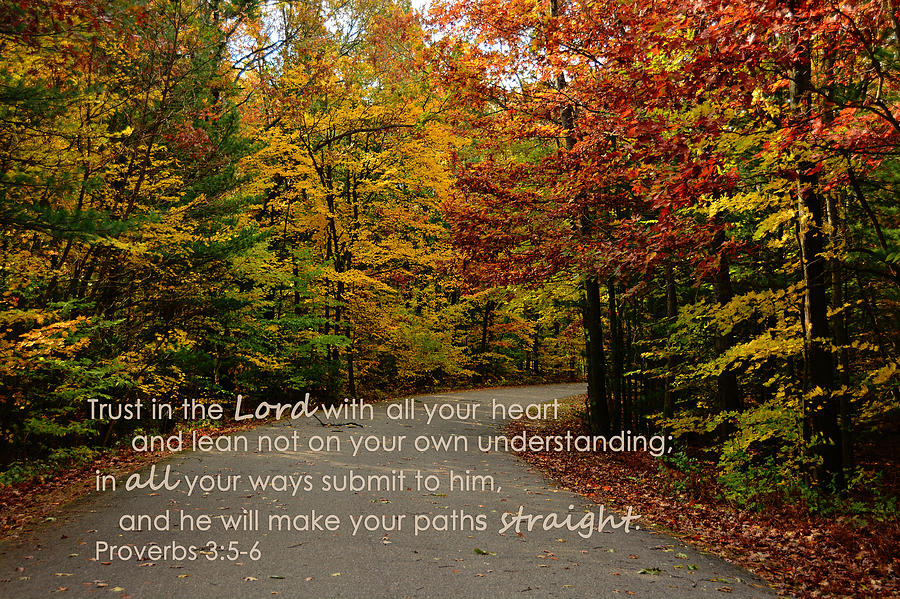 Country Quotes Phone Wallpaper Trust In The Lord Autumn Scenery Photograph By Melissa