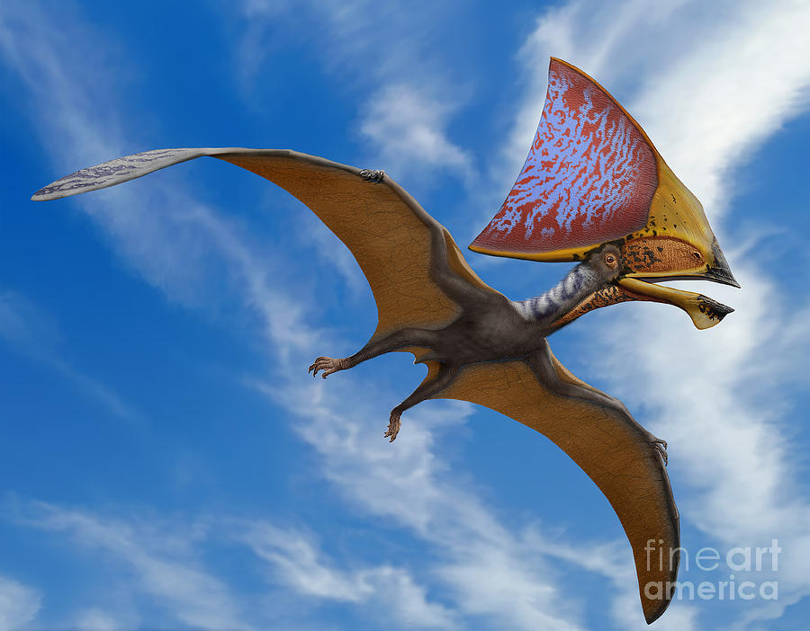 Chargers Iphone Wallpaper Tupandactylus Imperator A Pterosaur Digital Art By Sergey