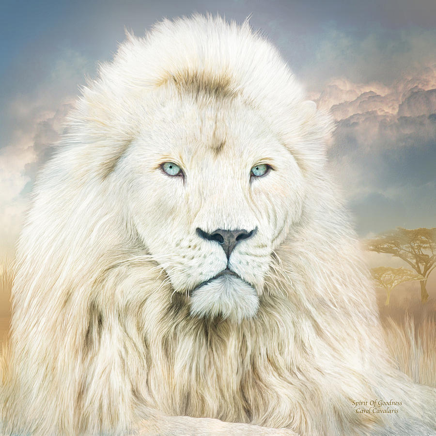 Full Hd Car Wallpapers 2014 White Lion Spirit Of Goodness Mixed Media By Carol Cavalaris