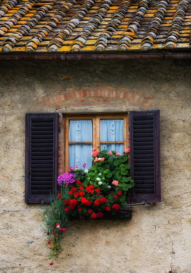 Floral Print Iphone Wallpaper Window Box Italy Photograph By Bob Coates
