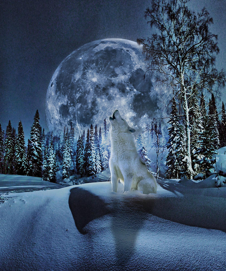 Winter Wallpaper For Iphone 4 Winter Moon Song Digital Art By Yury Malkov