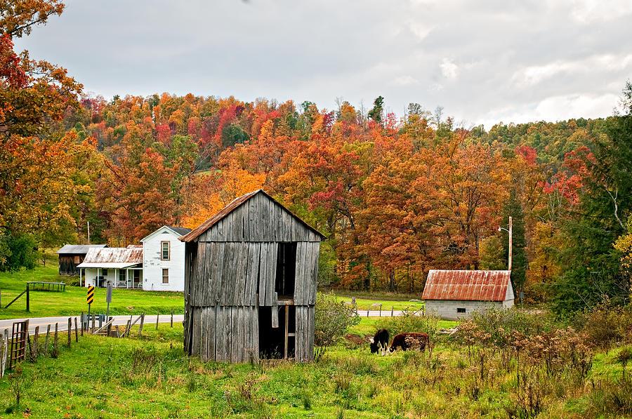 Fall Themed Iphone Wallpapers Autumn Farm Photograph By Steve Harrington