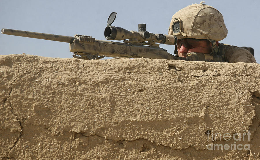 A Scout Sniper Provides Security Photograph by Stocktrek Images