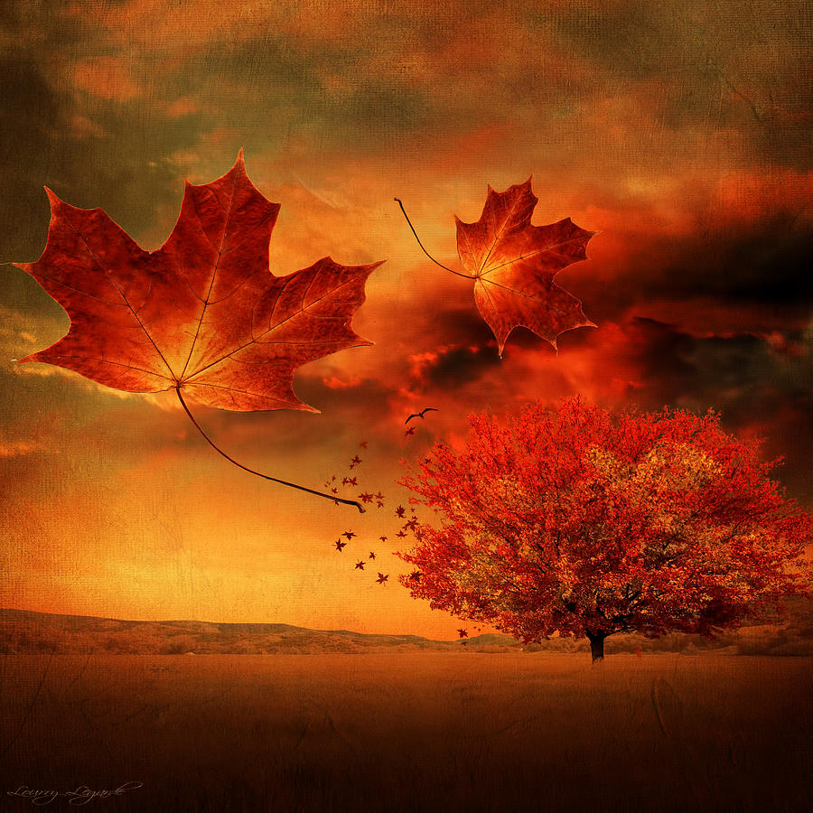 Fall Heart Leaves Background Wallpaper Autumn Blaze Photograph