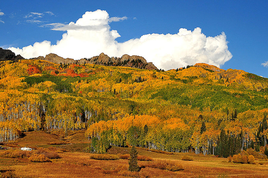 Late Fall Iphone Wallpaper Fall Colors I Kebler Pass Co Photograph By Michael Kitahara