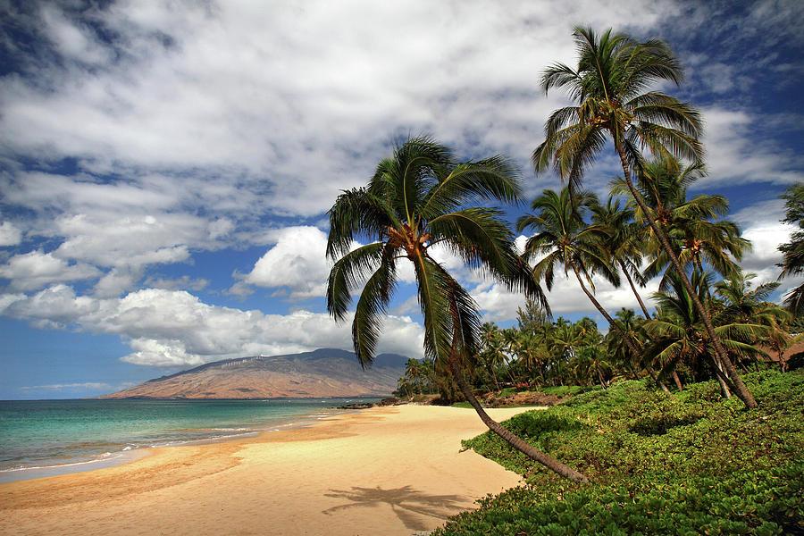 Kamaole Tropical Landscape Photograph By Pierre Leclerc Photography