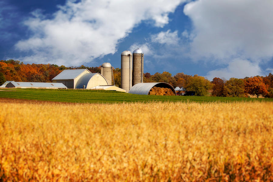Android Phone Fall Wallpaper Wisconsin Farm In Fall Photograph By Jarrod Erbe