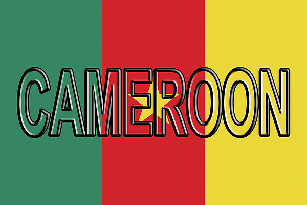 Flag Of Cameroon Word Weekender Tote Bag for Sale by Roy Pedersen - word flag