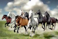 Running Horses Wall Art - Elitflat