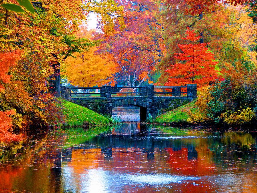 Michigan Fall Wallpaper Autumn In Boston Photograph By Marie Jamieson