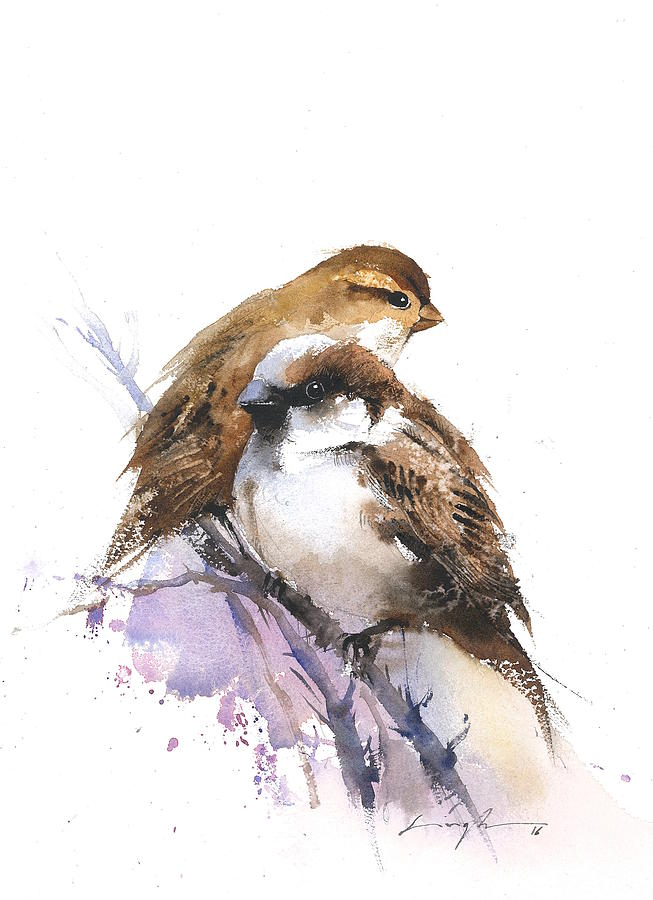 Bird Art Watercolor Sparrow Painting by Nitin Singh