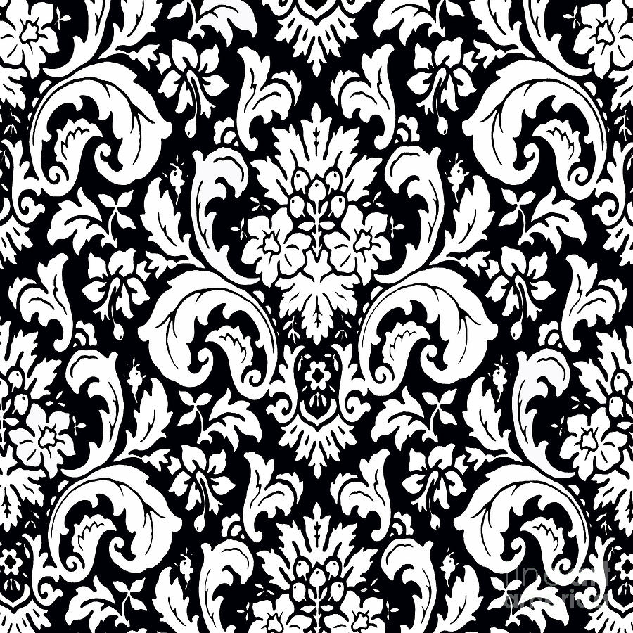 Cute Wallpapers Ipad App Black And White Paisley Pattern Vintage Painting By