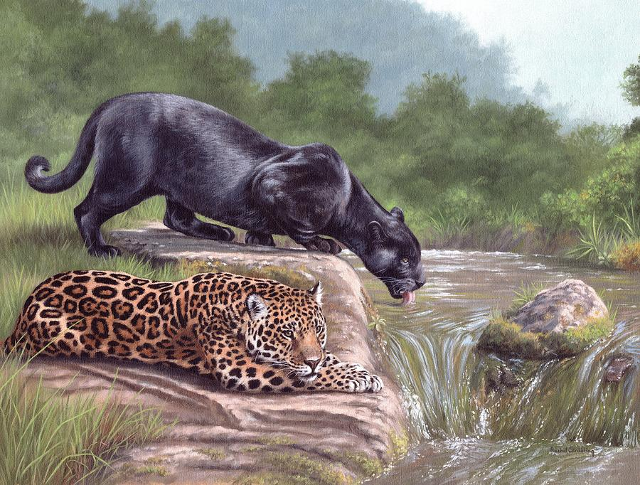 Black Panther And Jaguar Painting By Rachel Stribbling