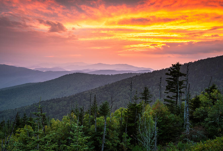 Fall Scenes For Ipad Wallpaper Clingmans Dome Great Smoky Mountains Purple Mountains