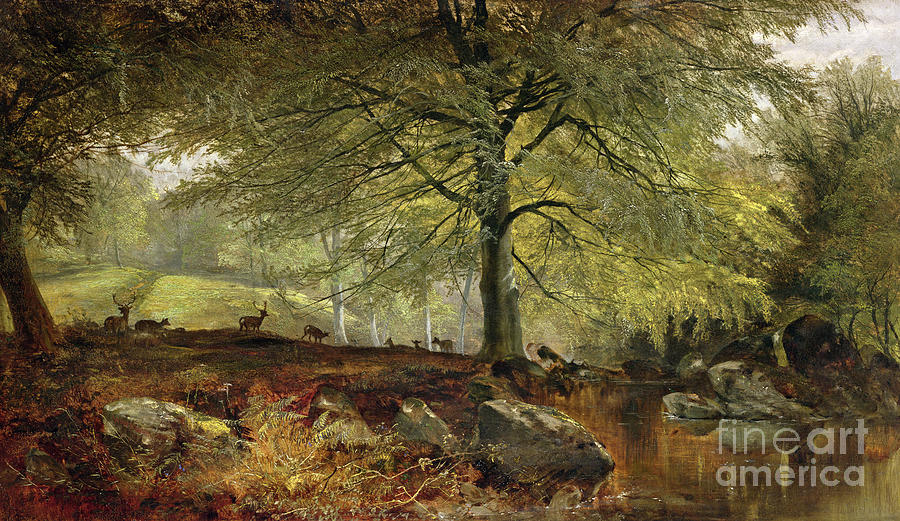 Free Fall Wallpaper Apps Deer In A Wood Painting By Joseph Adam