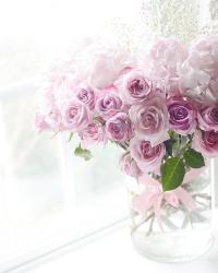 Dreamy Ethereal Pink Lavender Shabby Chic Romantic Roses ...