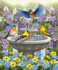 Fountain Festivities - Birds And Birdbath Painting ...