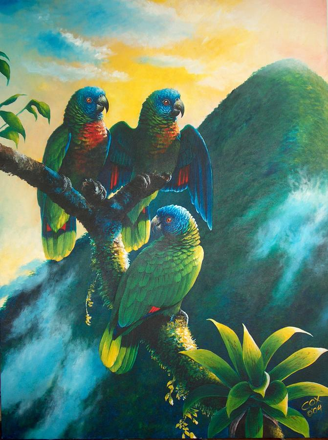 Chargers Iphone Wallpaper Gimie Dawn 1 St Lucia Parrots Painting By Christopher Cox