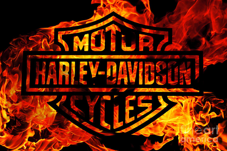 Free Hd Live Wallpapers For Android Harley Davidson Logo Flames Digital Art By Randy Steele