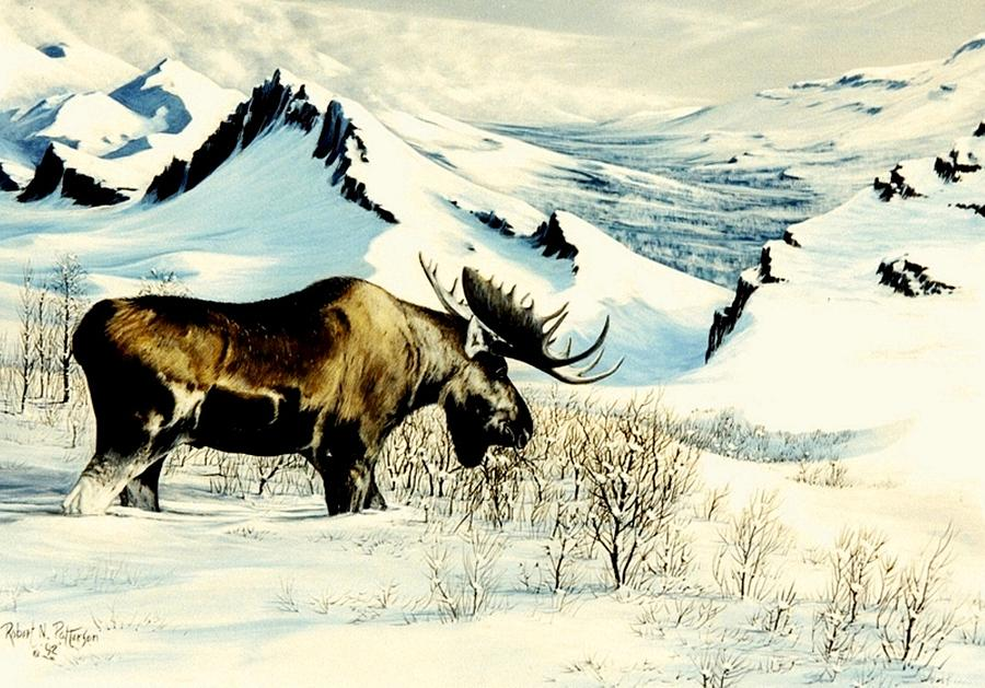 Chargers Iphone Wallpaper Moose Ridge First Snow Painting By Bob Patterson