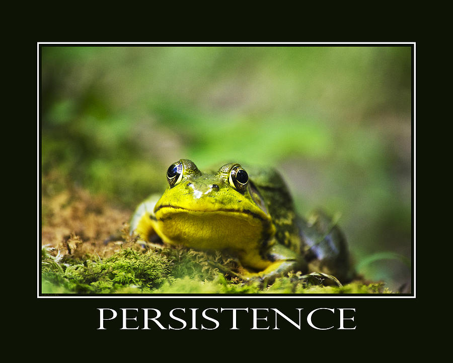 Persistence Inspirational Motivational Poster Art Photograph by