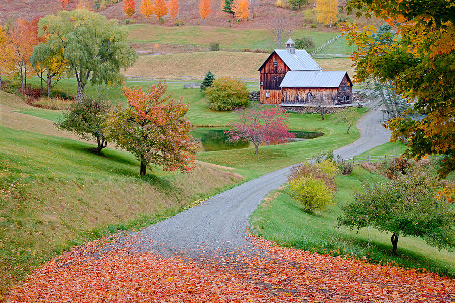 Fall Colors Mobile Wallpaper Sleepy Hollow Farm Autumn Vermont Photograph By Binh Ly