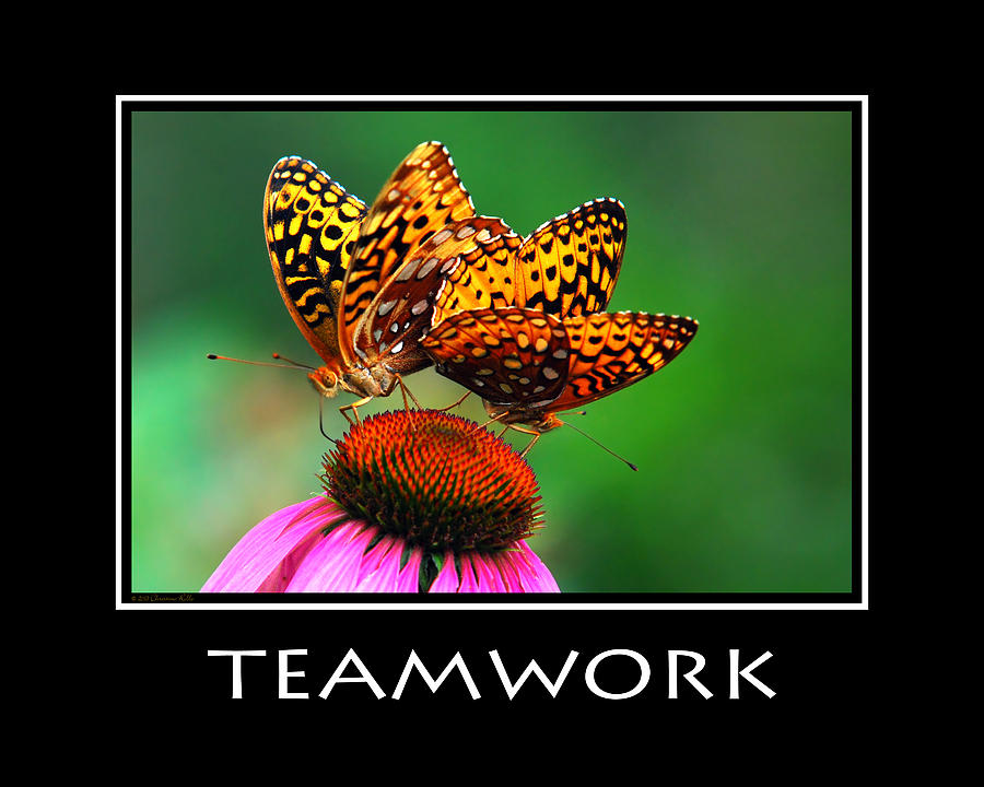 Teamwork Inspirational Motivational Poster Art Photograph by