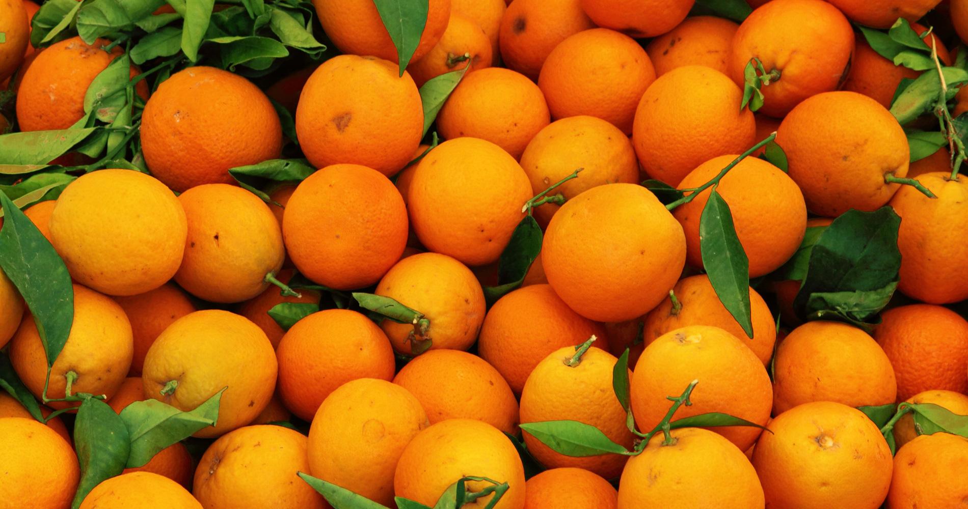 Black Ops 2 Wallpaper Orange S Explique Sur Les Lenteurs De Youtube Constat 233 Es