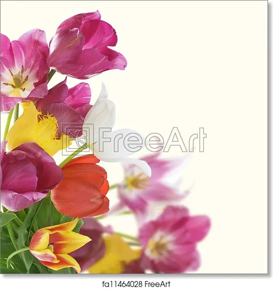 Free art print of Flowers Border Anniversary Card Design FreeArt