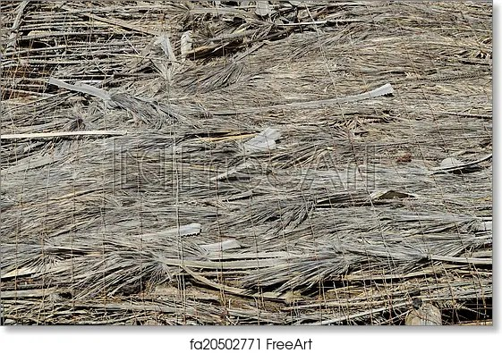 Free art print of Texture of the classic thatch roof Texture of the