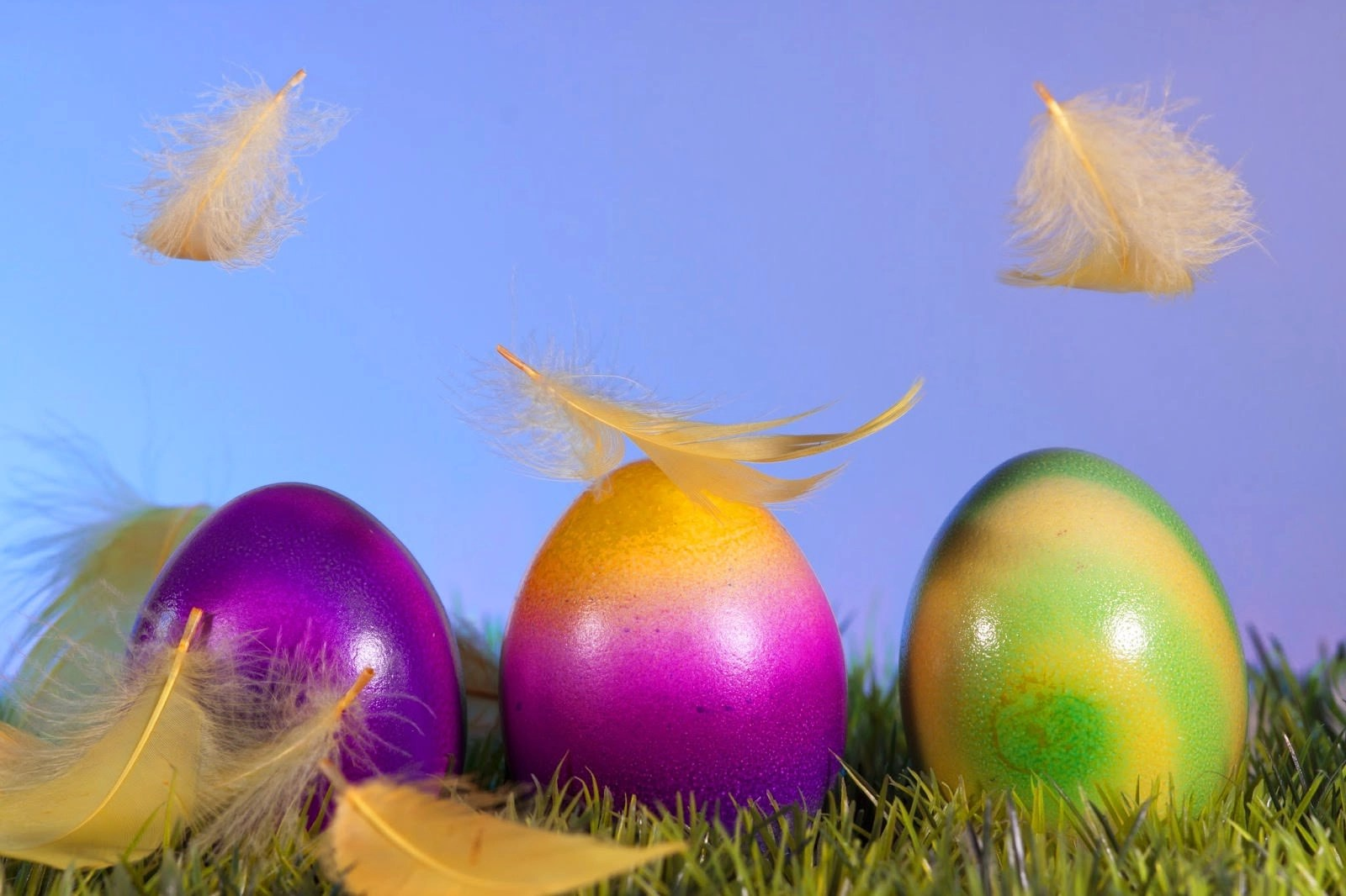 Falling Feathers Wallpaper Download 20 Best Happy Easter Backgrounds